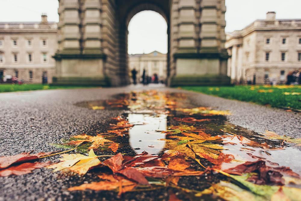 JoyDoesStuff Dublin Rainy afternoon puddles