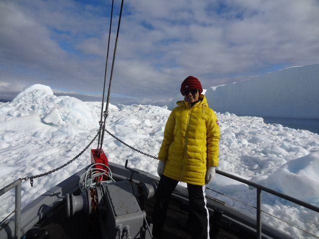 canada goose at sailing among glaciers